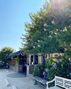 Read more about the article Stefano's In Full Bloom  // THANKS   Weber Never Been More Beautiful! // Open at… – Stefano's Restaurant LBI